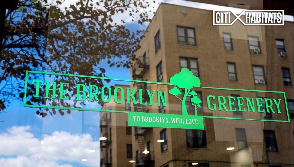 Streeteasy The Lincoln Apartments At 510 Flatbush Avenue In Prospect Lefferts Gardens 2a