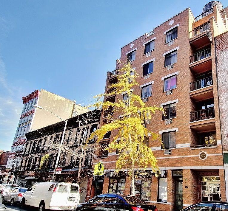Streeteasy Rentals Nyc: StreetEasy: 41 Avenue B In East Village, #5B